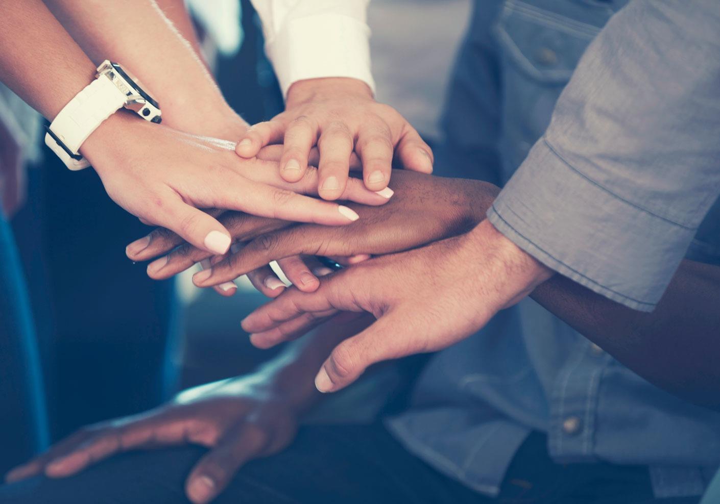 Team Members Hands